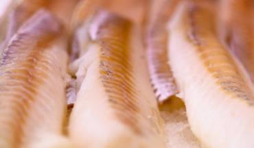 Filetti di merluzzo